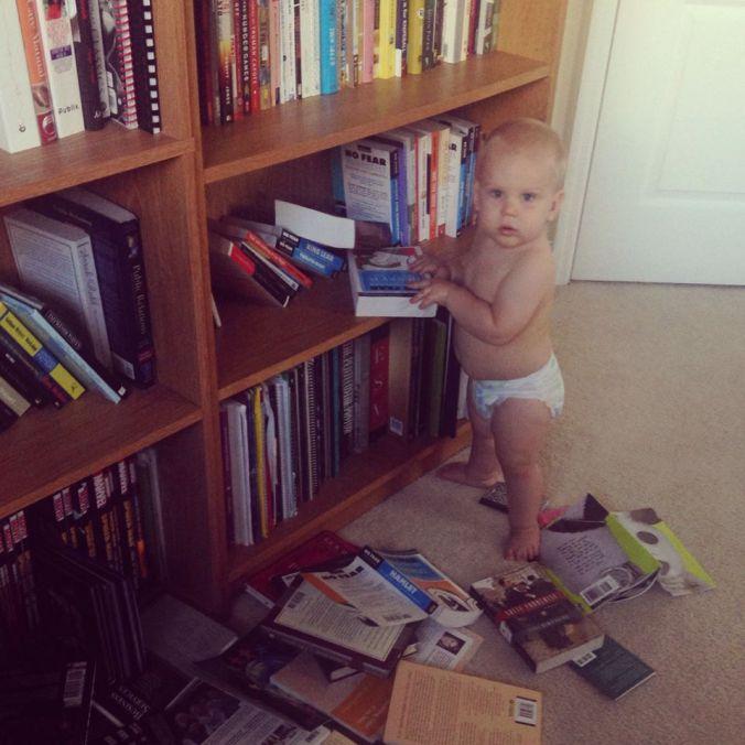 dax_bookshelf